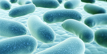 REMEDIAL ACTION FOR LEGIONELLA CONTROL